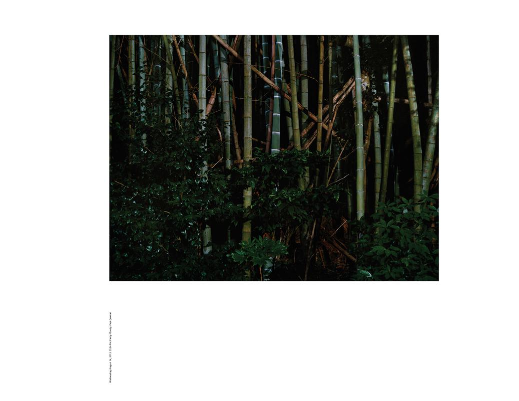 http://www.hakuro.net/files/gimgs/1_nigel-bennethakuro02.jpg